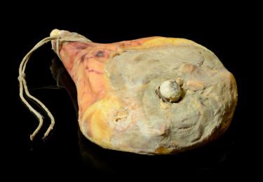 prosciutto-crudo-osso-intero-salumi-san-giorgio-lucano